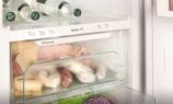 Холодильник будущего: без фреона и компрессора