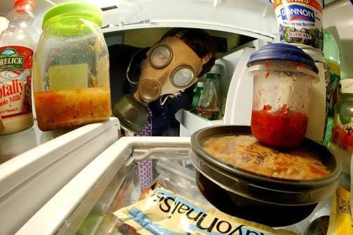 Запах в холодильнике, морозильной камере