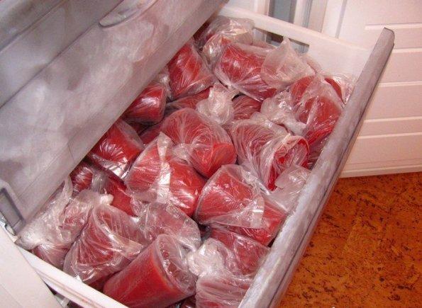 Не работает морозилка в холодильнике