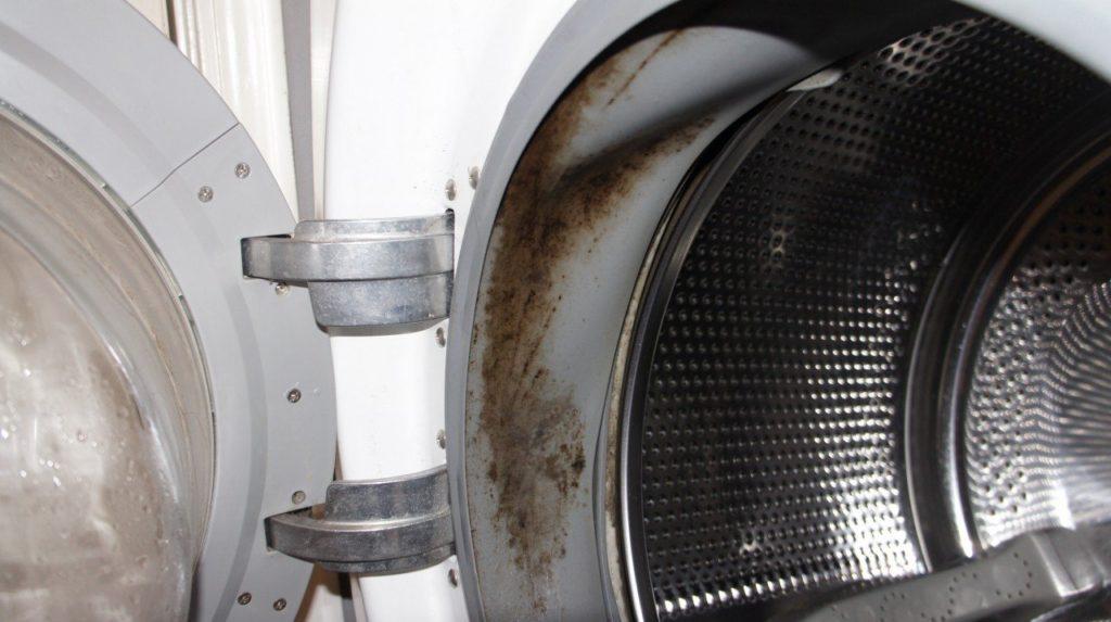 Чем устранить плесень в стиральной машине