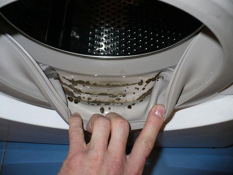 Почему появилась плесень в стиральной машине