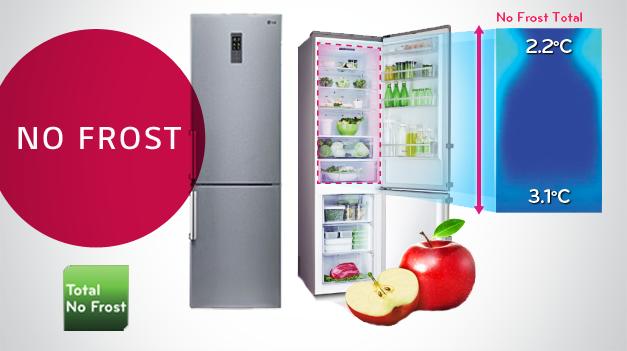 Двухкамерный холодильник «Ноу Фрост»: неисправности