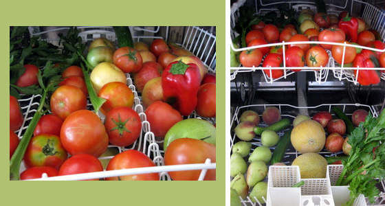 Многие используют посудомоечную машину для мытья фруктов и овощей для консервирования