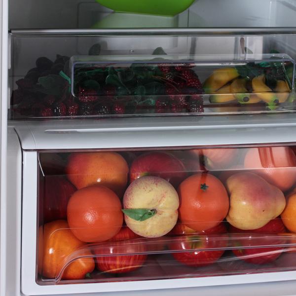 Современные модели холодильников Канди оснащены отделением, в котором установлена система Biocold Futura