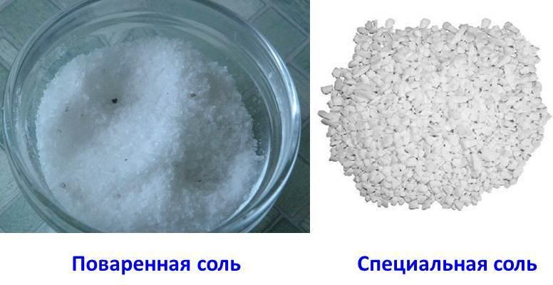 Отличительные наглядные отличия поваренной соли от специальной