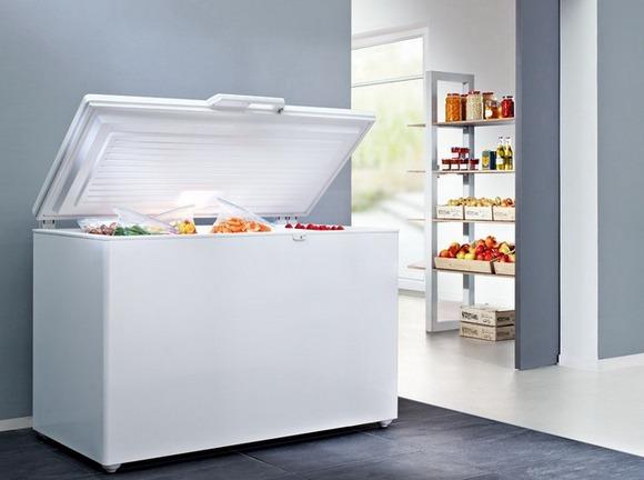 Морозильные лари чаще используются для хранения замороженных продуктах в кафе и ресторанах