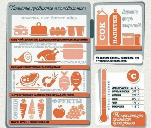 Схема правильного расположения продуктов в холодильнике