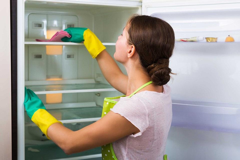 Мытье холодильника имеет важное значение