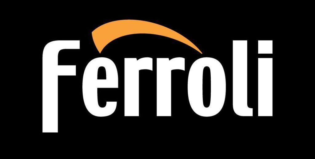 Газовые котлы Ферроли: обзор, отзывы, неисправности
